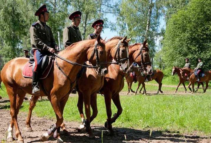1812 год российская кавалерия-2 виды кавалерии