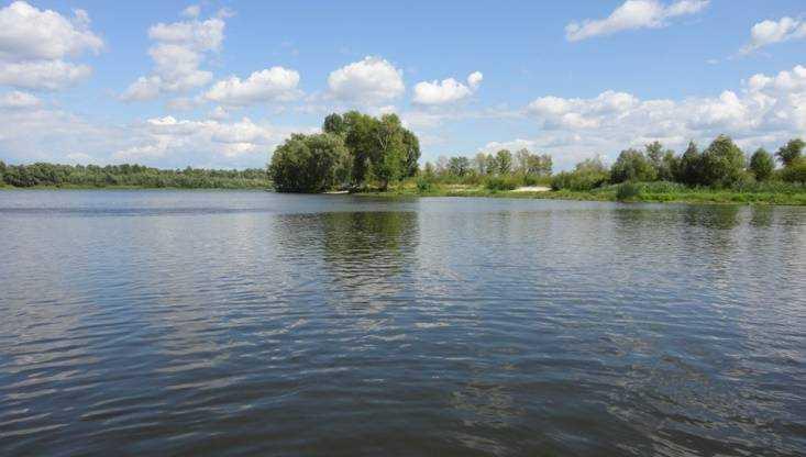 ВТрубчевском районе потонул мужчина