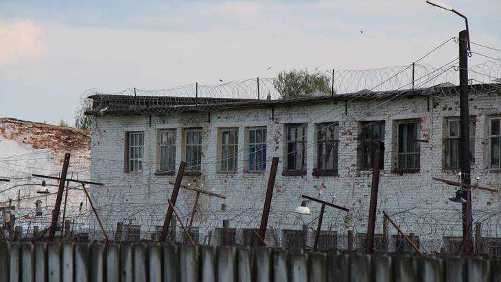 ВБрянской области 43-летняя женщина попьяни убила мужа