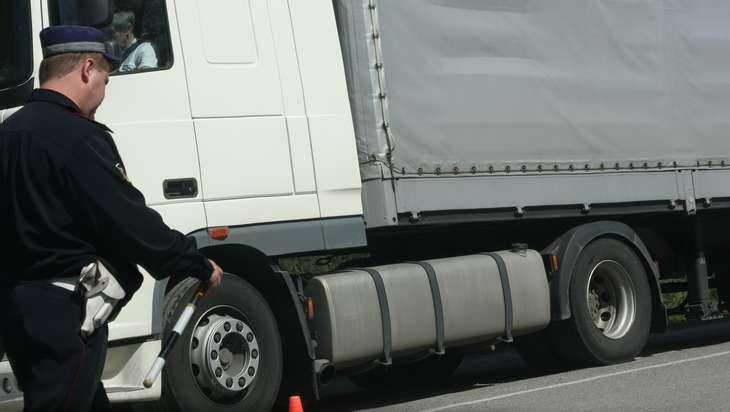 Натрасе Брянск— Новозыбков шофёр фуры сбил 12-летнего велосипедиста