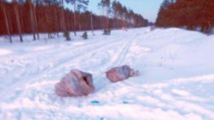 ВБрянске женщина отыскала два мешка сизуродованными трупами собак