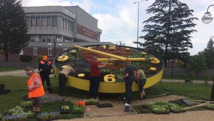В Брянске на Славянской площади в циферблат часов высадили новые цветы