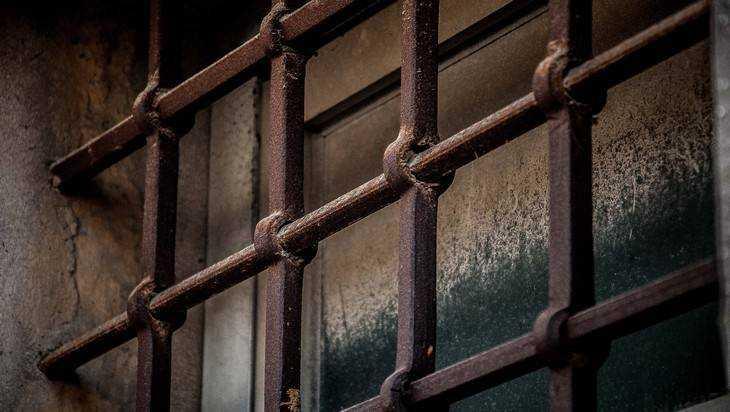 Заудар полицейского 22-летнего брянца посадили на10 месяцев