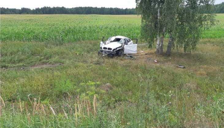 Под Стародубом перевернулся BMW – водитель повредил позвоночник