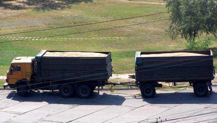 Курское зерно везли вБрянск без карантинных сертификатов