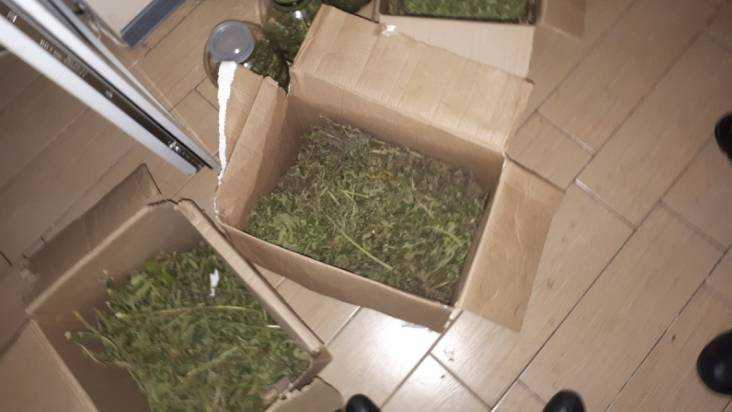 2-х брянцев подозревают ворганизации лаборатории попроизводству наркотиков