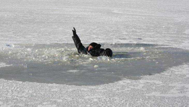 ВУльяновской области рыбак провалился под лед
