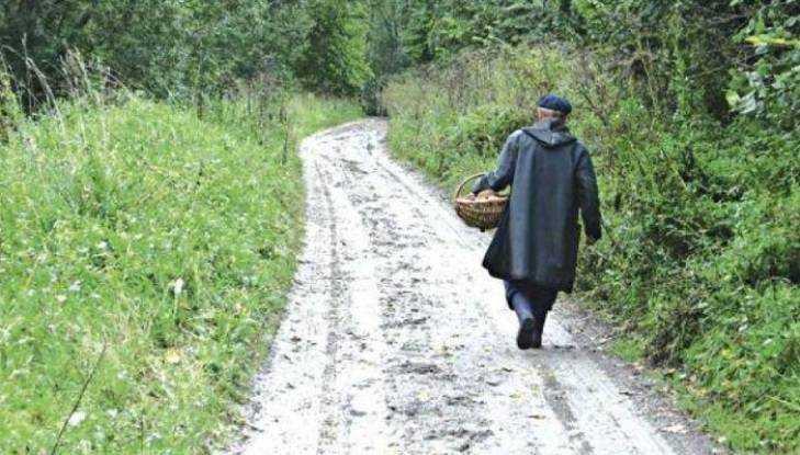 Брянские полицейские спасли 2-х заблудившихся влесу пенсионерок