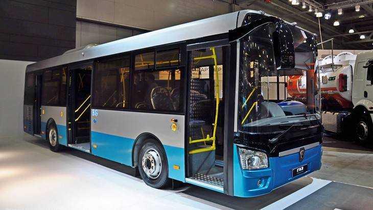 Для Брянска купили еще 53 больших автобуса