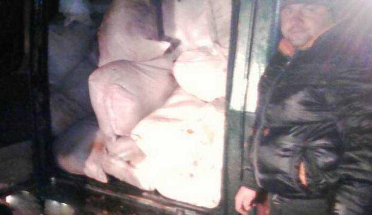 Через границу Украины и РФ перебросили тонну зараженного чумой мяса