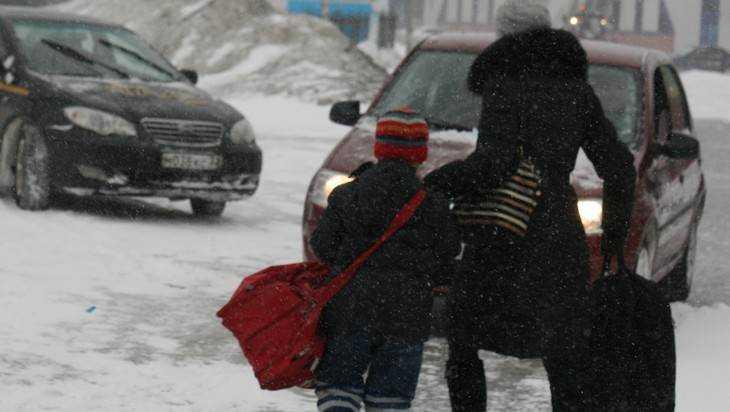 Экстренное предупреждение: брянцам обещают мокрый снег исильный ветер