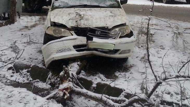 В Ивоте водитель легковушки при обгоне врезался в дерево