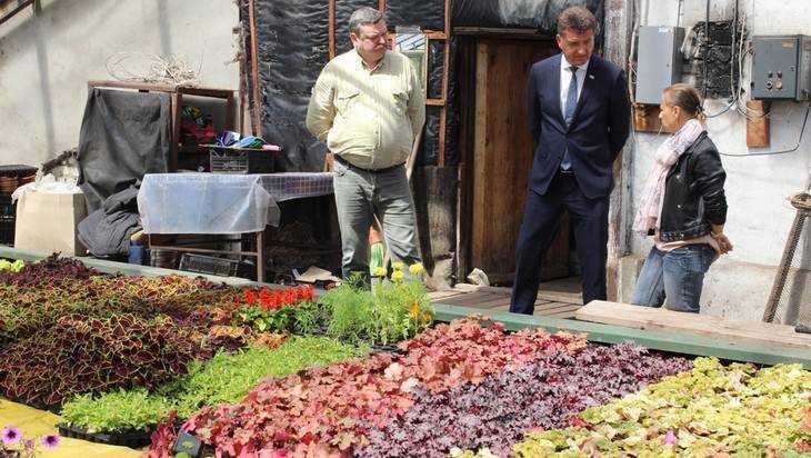 Озеленители пожаловались главе Брянска нарасхитителей цветов