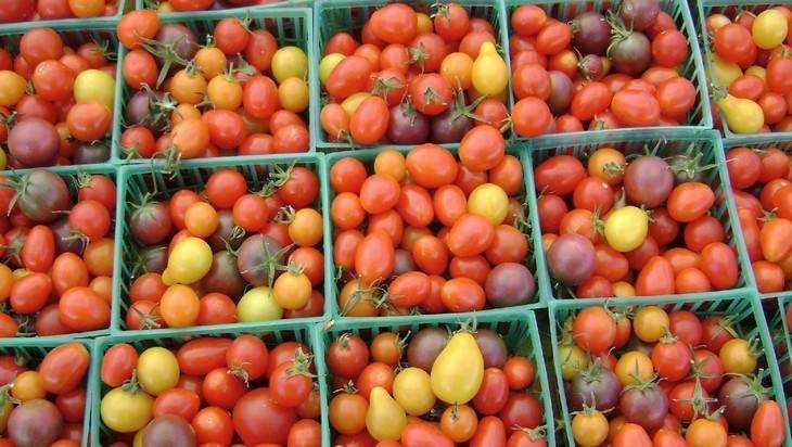 ВБрянской области подорожали помидоры, яйца иконсервы