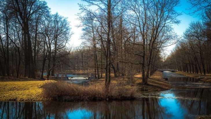 В Брянской области 30 марта потеплеет до 13 градусов