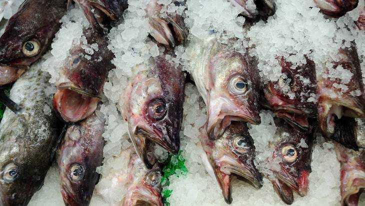 Белоруссия в15 раз увеличила поставки рыбы вРоссию
