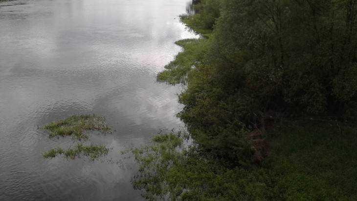 Вреке вСтародубе отыскали  тело 43-летнего мужчины