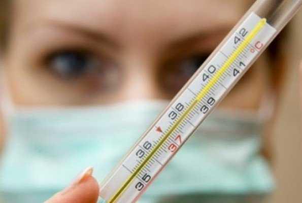 В Курской области скончалась вторая жертва свиного гриппа