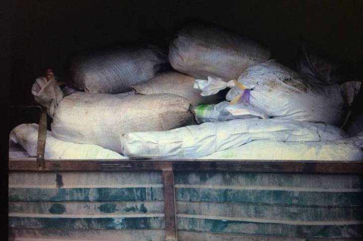 В РФ сУкраины попытались провезти восемь центнеров свинины, зараженной чумой