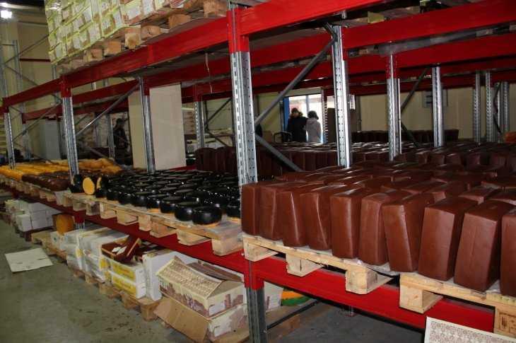 Брянская милиция лишила дельцов 7 споловиной тонн сомнительного сыра