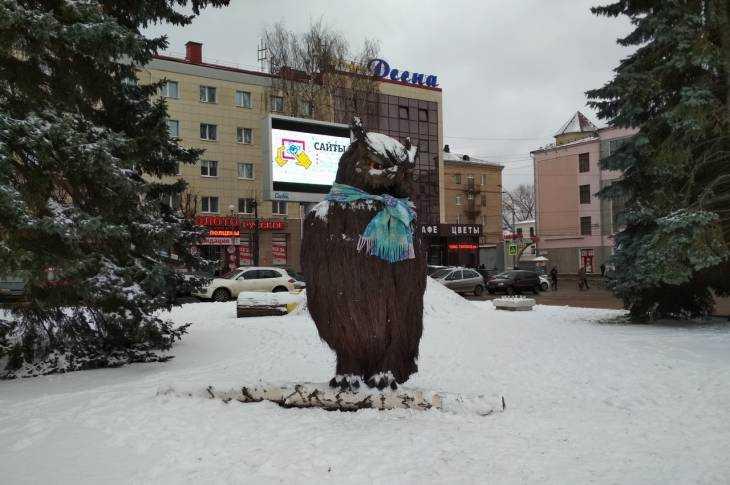 Украшать главную новогоднюю ёлку Брянска будут минимум 3 дня