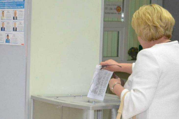ВБрянской области явка избирателей напраймериз квечеру превысила 13 процентов