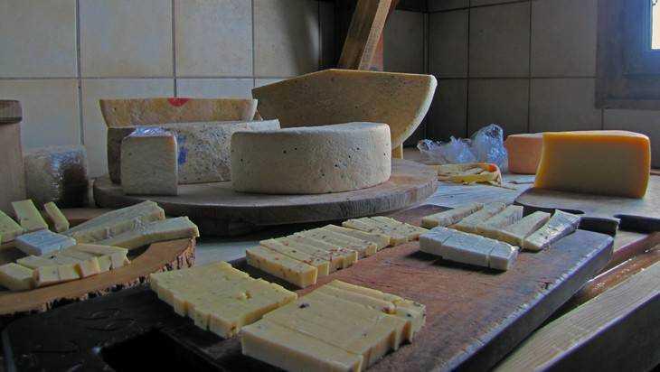 Брянская область в2017г увеличила выпуск сыров на14,2%