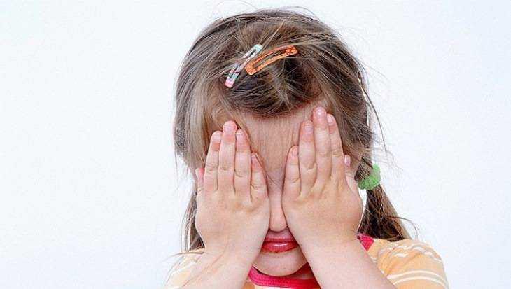 Жителя Сахалинской области обвинили всовращении 11-летней брянчанки