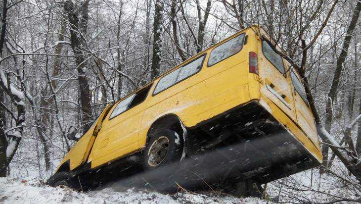 ВБрянске маршрутное такси съехало вкювет