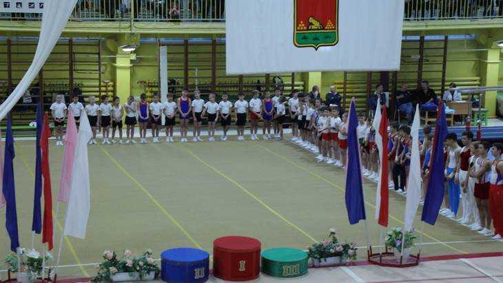 В Брянске начались областные соревнования по спортивной гимнастике