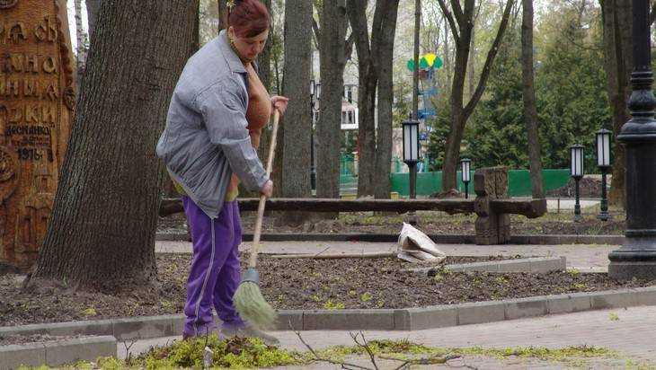 Брянских бюджетников выгонят нагенеральную уборку коДню города