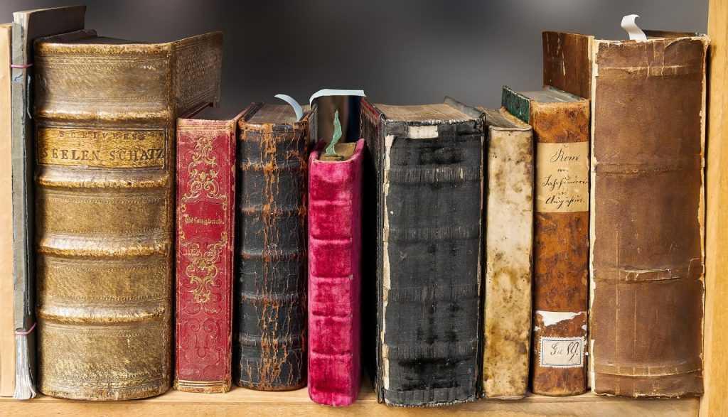 По брянским городам и весям поехала библиотека на колесах