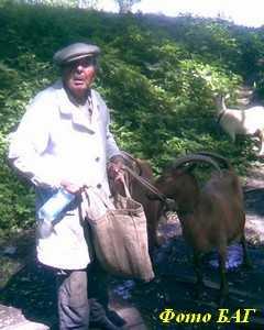 Брянским санитарам не понравился украинский сыр
