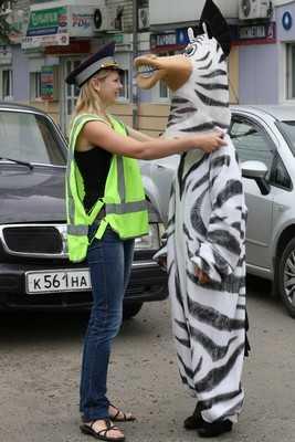 Нарусова: «В Брянске только одна «зебра» — на площади Ленина»