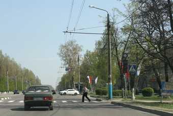 После критики Нарусовой в Брянске начали рисовать «зебры»