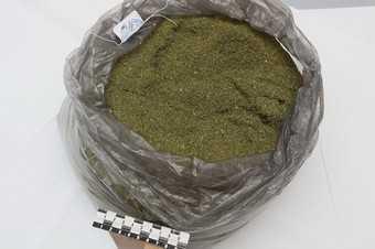 Киевский сварщик попался на марихуане