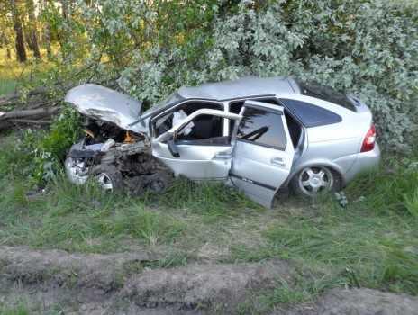 ДТП под Выгоничами: Приора врезалась в дерево и приземлилась в кустах
