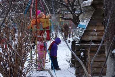 Брянская полиция разыскала четверых детей, заблудившихся в лесу