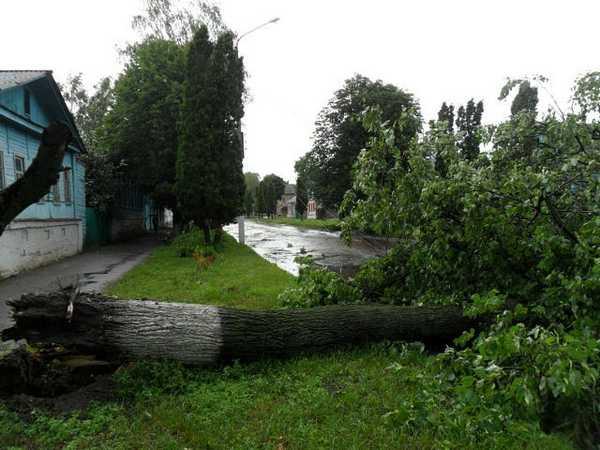 Ураган, бушевавший в Брянской области, нанес ущерб на 11 миллионов