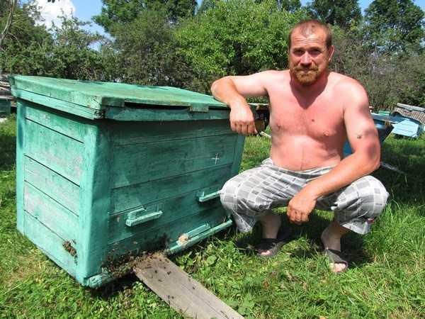 Брянский пчеловод установил рекорд