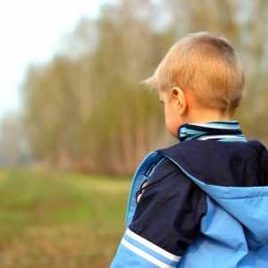 Родители потеряли сынишку по дороге с пикника