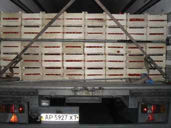 В Брянскую область хотели завезти подозрительные томаты