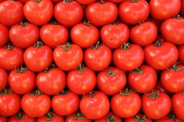 Молдавские яблоки и томаты вернулись на родину