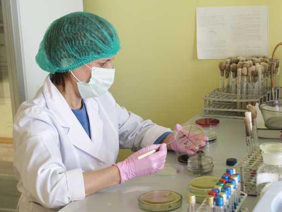 Брянская ветлаборатория снова нашла в белорусской колбасе опасные микробы