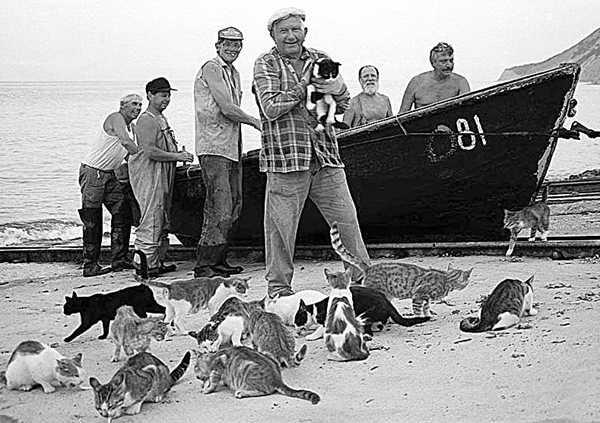 В Брянске осудили рыбного браконьера