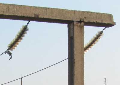 В Брянске установили главную  елку