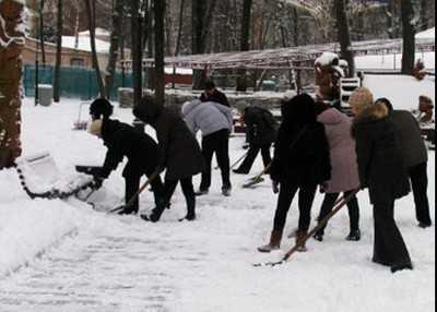 По велению губернатора брянские чиновники в шубах чистят снег