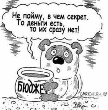 Родные братья из брянской глубинки «накололи» бюджет на 776 тысяч рублей