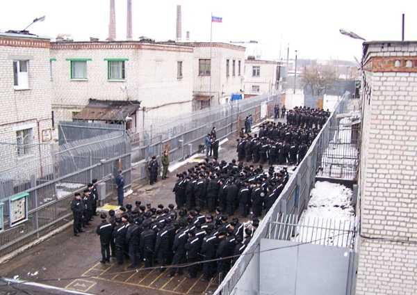 Прокуратура не выявила нарушений прав осужденных в брянских тюрьмах