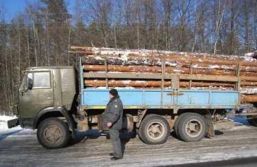 Заказчики «потеряли» в Брянской области на шоссе Орел-Витебск лес, овощи, фрукты